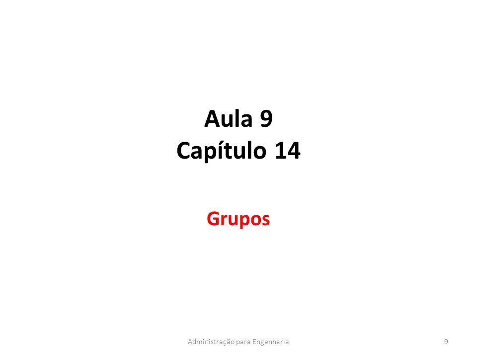 Aula 9 Capítulo 14 Grupos 9Administração para Engenharia