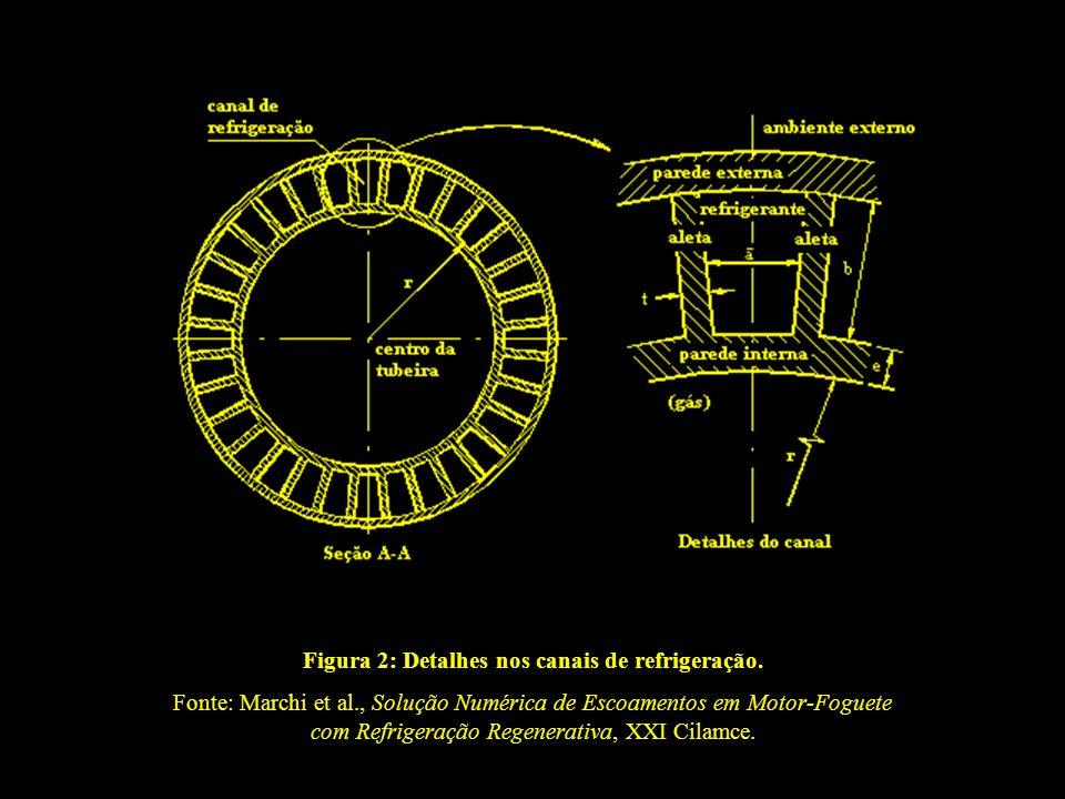 Figura 2: Detalhes nos canais de refrigeração. Fonte: Marchi et al., Solução Numérica de Escoamentos em Motor-Foguete com Refrigeração Regenerativa, X