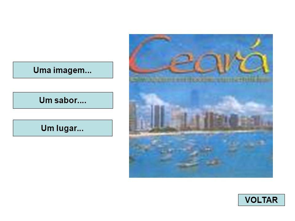 PRAIAS CEARENSES Embora seja um dos menores Estados do Brasil, o Ceará tem um dos litorais mais extensos do país.
