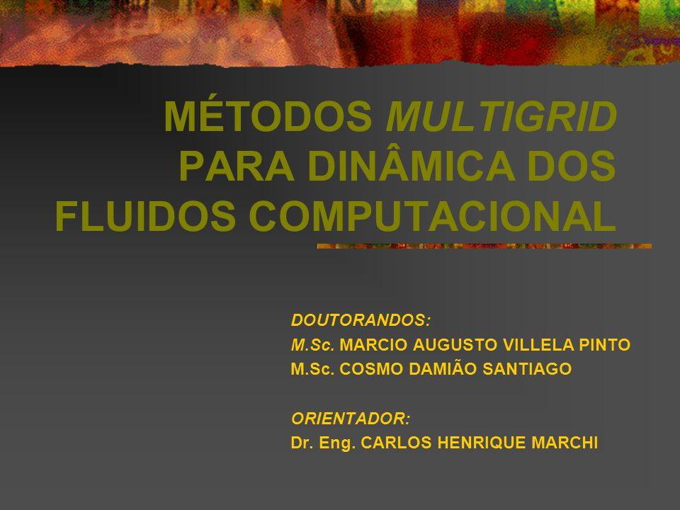 MÉTODOS MULTIGRID PARA DINÂMICA DOS FLUIDOS COMPUTACIONAL DOUTORANDOS: M.Sc. MARCIO AUGUSTO VILLELA PINTO M.Sc. COSMO DAMIÃO SANTIAGO ORIENTADOR: Dr.