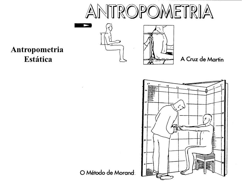 Prof. Maria Lucia L. Ribeiro Okimoto 12 Antropometria Estática