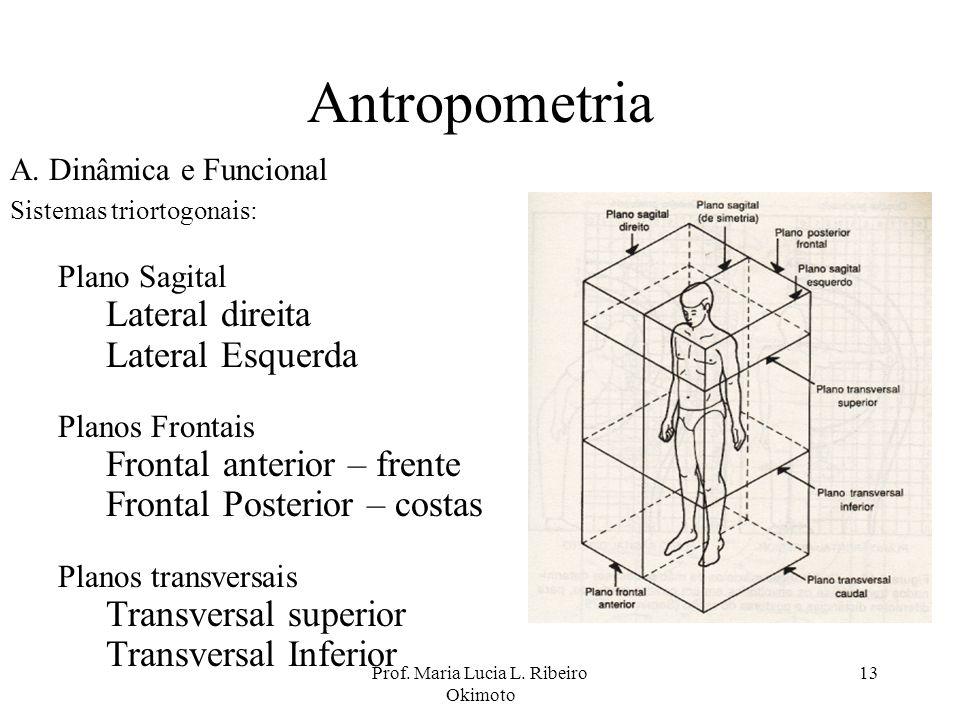 Prof. Maria Lucia L. Ribeiro Okimoto 13 Antropometria A. Dinâmica e Funcional Sistemas triortogonais: Plano Sagital Lateral direita Lateral Esquerda P
