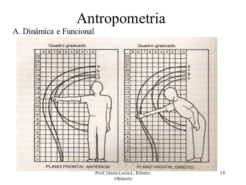 Prof. Maria Lucia L. Ribeiro Okimoto 15 Antropometria A. Dinâmica e Funcional