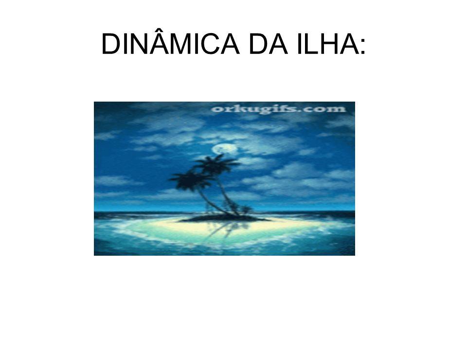 DINÂMICA DA ILHA: