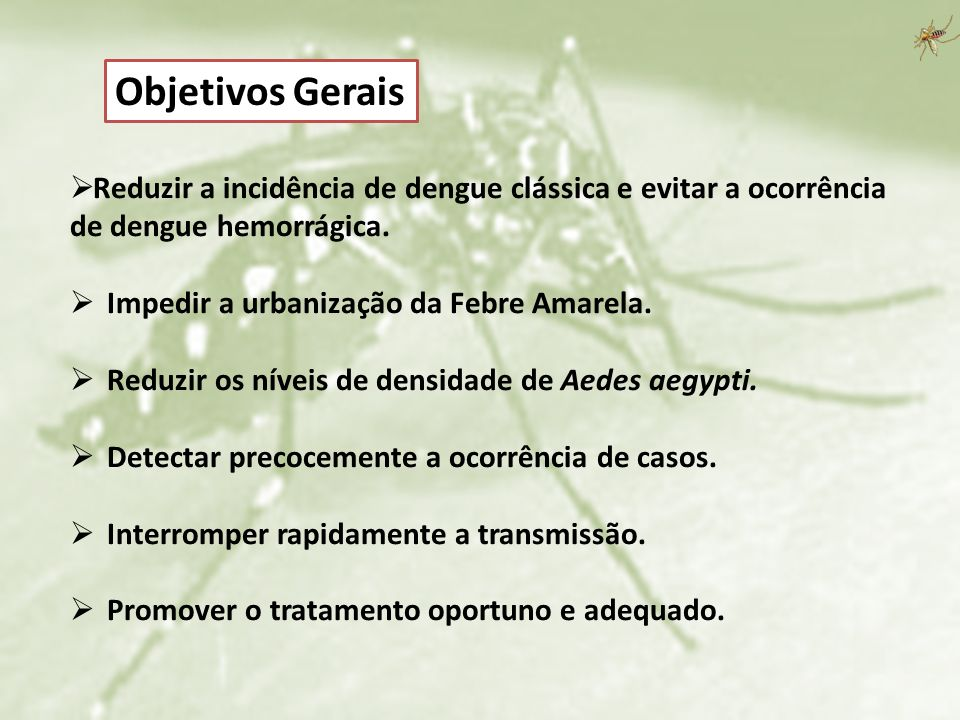 Reduzir a incidência de dengue clássica e evitar a ocorrência de dengue hemorrágica. Impedir a urbanização da Febre Amarela. Reduzir os níveis de dens