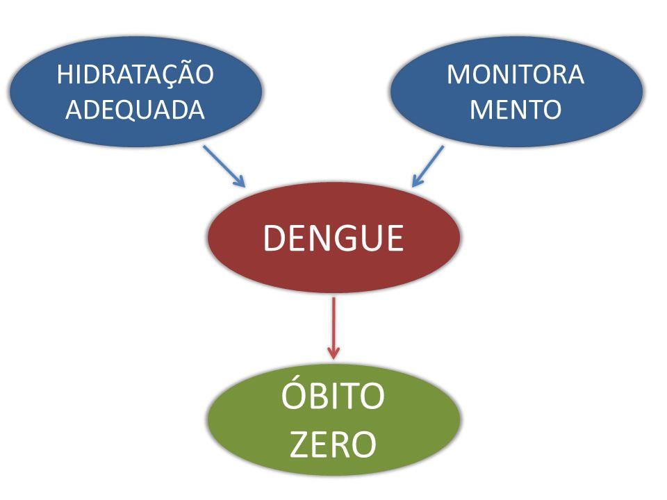 DENGUE HIDRATAÇÃO ADEQUADA MONITORA MENTO ÓBITO ZERO
