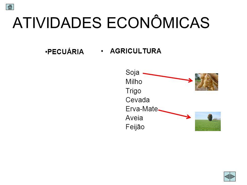 ATIVIDADES ECONÔMICAS AGRICULTURA Soja Milho Trigo Cevada Erva-Mate Aveia Feijão PECUÁRIA