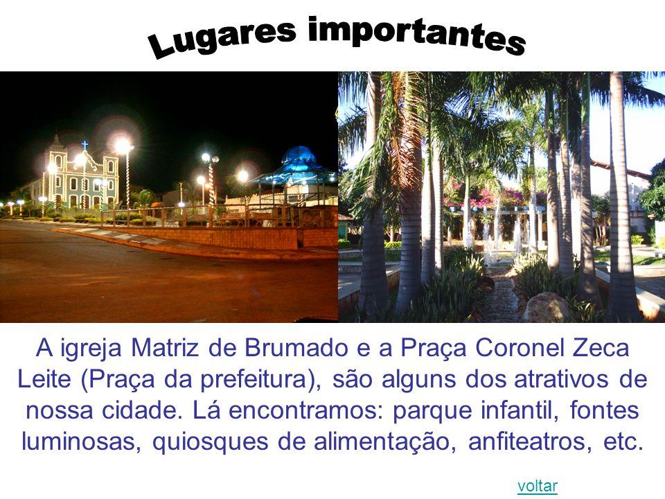 A igreja Matriz de Brumado e a Praça Coronel Zeca Leite (Praça da prefeitura), são alguns dos atrativos de nossa cidade. Lá encontramos: parque infant