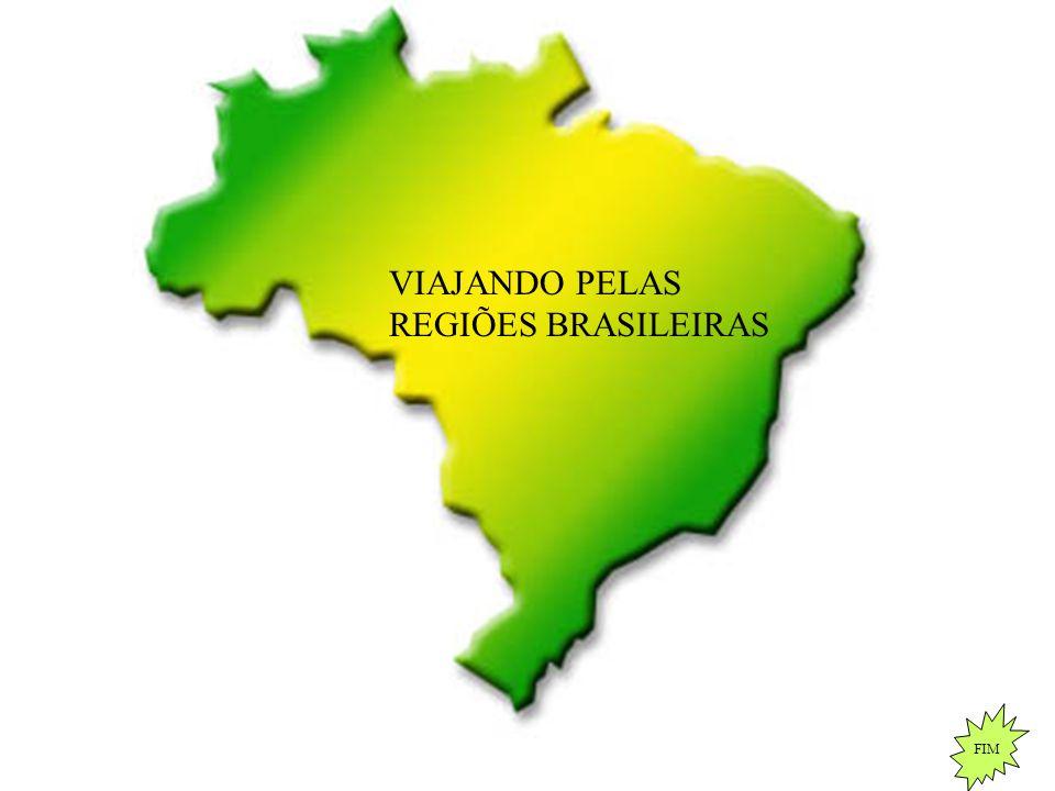 VIAJANDO PELAS REGIÕES BRASILEIRAS FIM