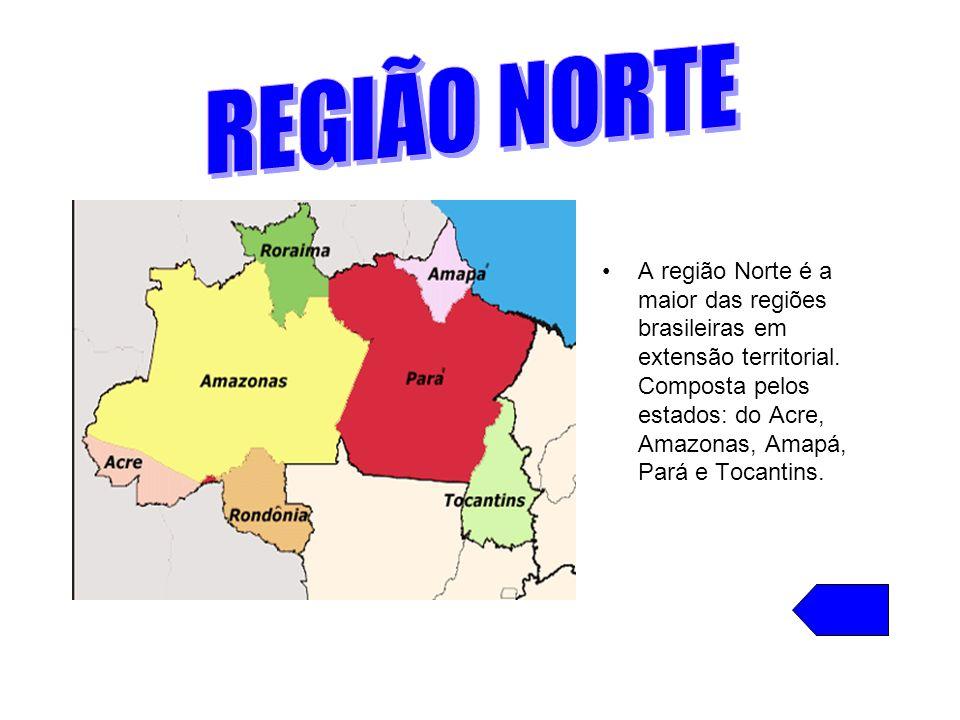 A região Norte é a maior das regiões brasileiras em extensão territorial. Composta pelos estados: do Acre, Amazonas, Amapá, Pará e Tocantins.