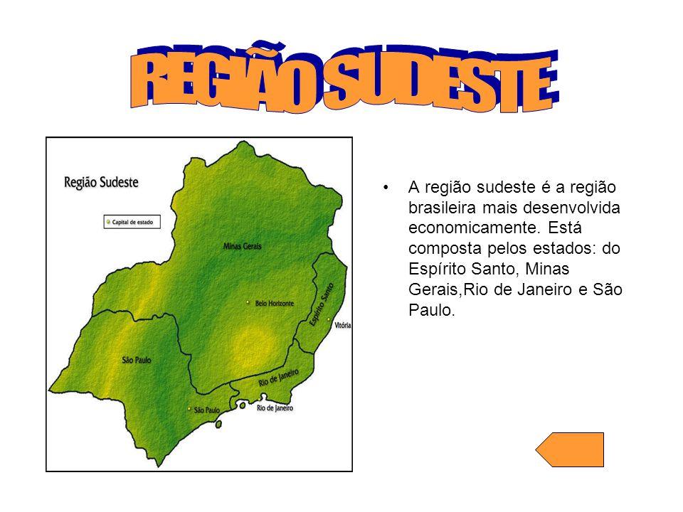 A região sudeste é a região brasileira mais desenvolvida economicamente. Está composta pelos estados: do Espírito Santo, Minas Gerais,Rio de Janeiro e