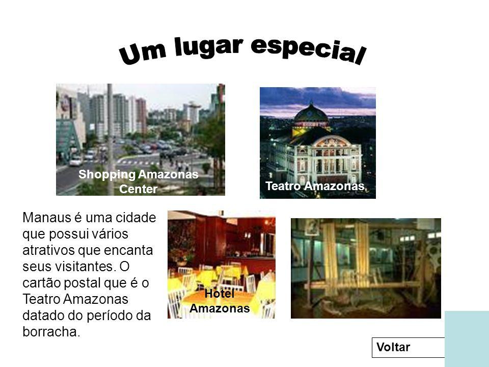 Teatro Amazonas Shopping Amazonas Center Hotel Amazonas Museu do Índio Manaus é uma cidade que possui vários atrativos que encanta seus visitantes.
