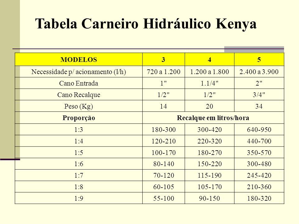 Tabela Carneiro Hidráulico Kenya MODELOS345 Necessidade p/ acionamento (l/h)720 a 1.2001.200 a 1.8002.400 a 3.900 Cano Entrada1