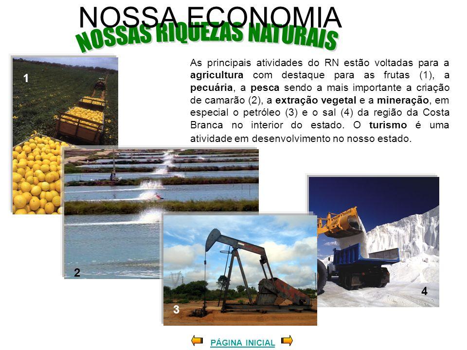 NOSSA ECONOMIA As principais atividades do RN estão voltadas para a agricultura com destaque para as frutas (1), a pecuária, a pesca sendo a mais impo