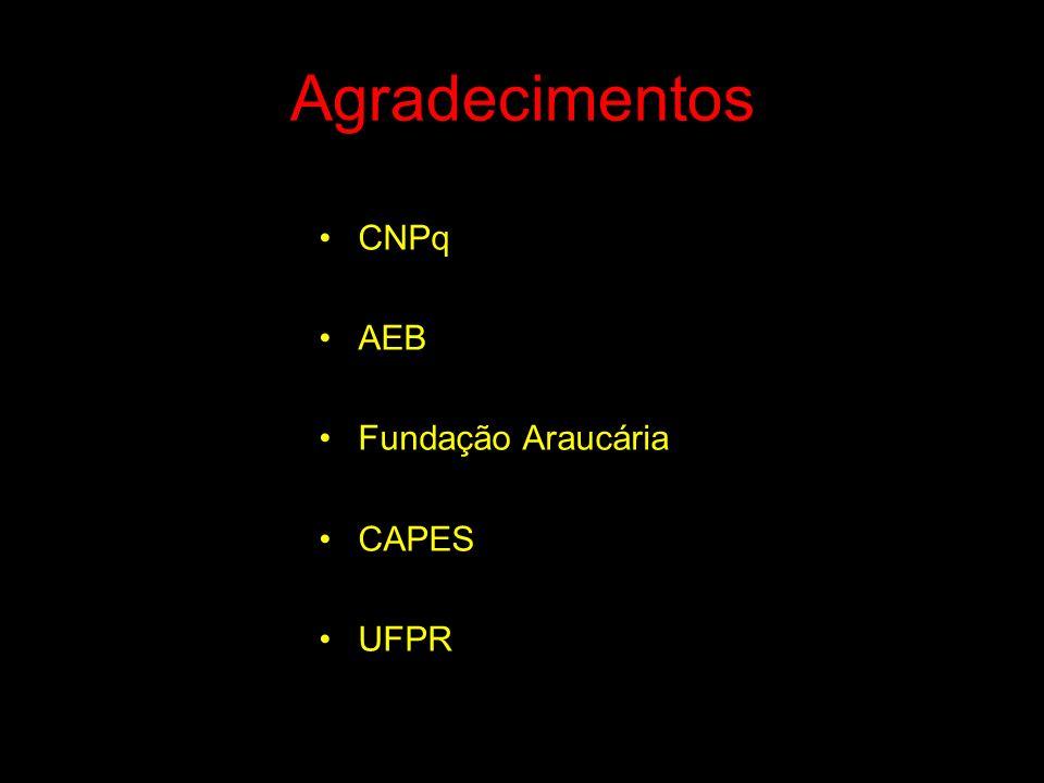 Agradecimentos CNPq AEB Fundação Araucária CAPES UFPR