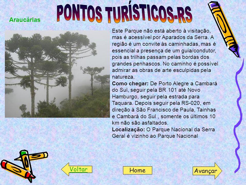 Araucárias Este Parque não está aberto à visitação, mas é acessível por Aparados da Serra. A região é um convite às caminhadas, mas é essencial a pres