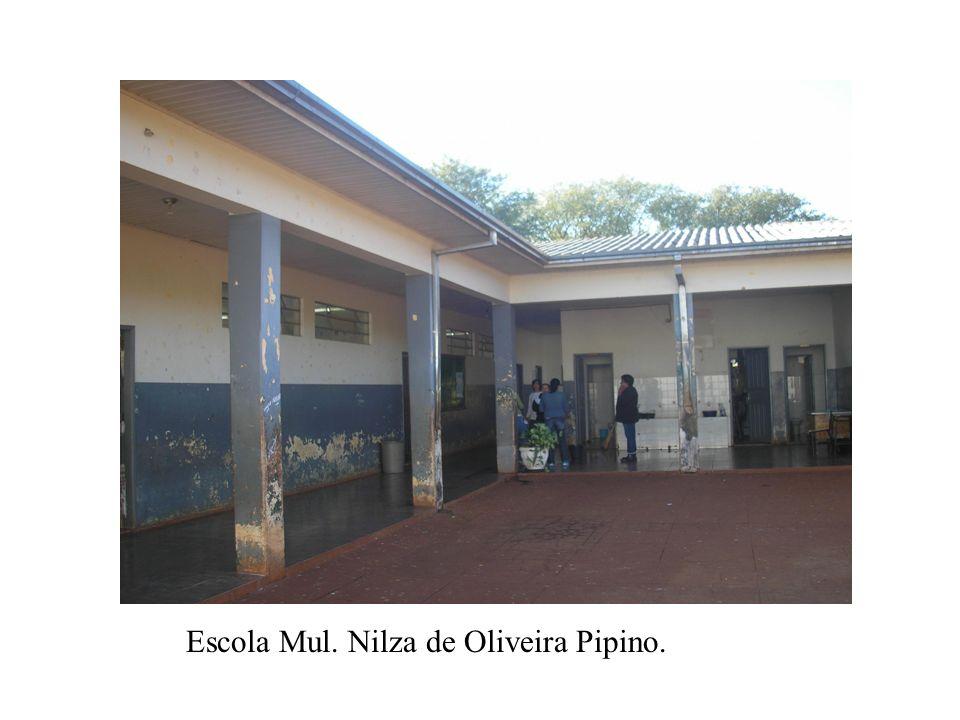 Horta orgânica da Escola Nilza de Oliveira Pipino- Ensino Fundamental