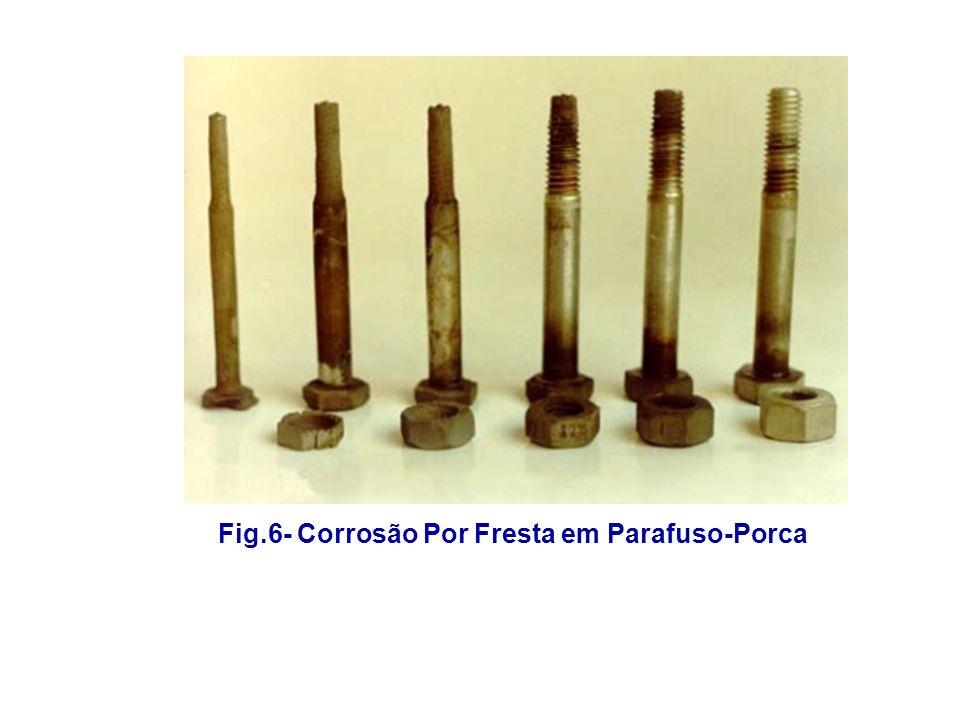 Fig.6- Corrosão Por Fresta em Parafuso-Porca