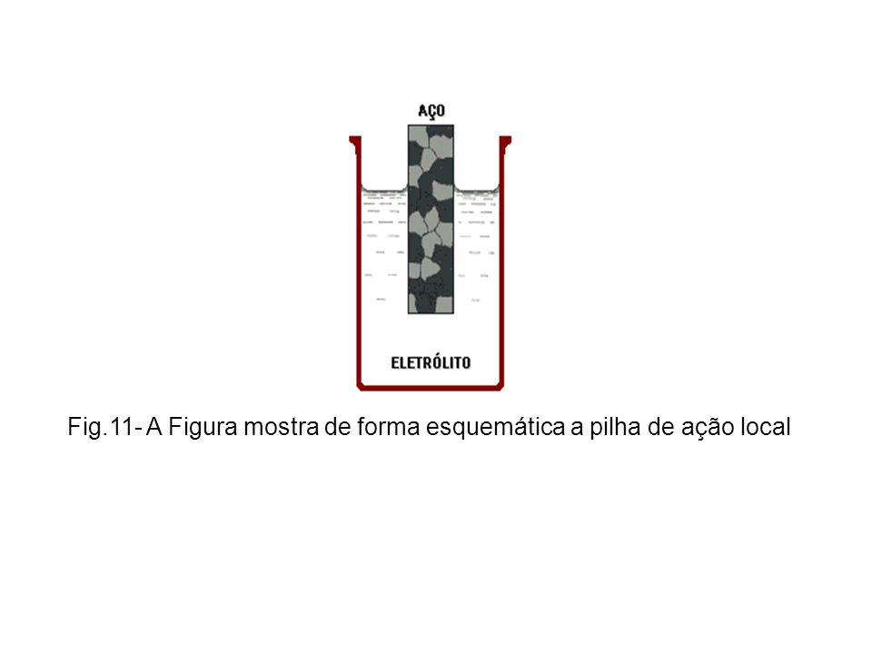 Fig.11- A Figura mostra de forma esquemática a pilha de ação local