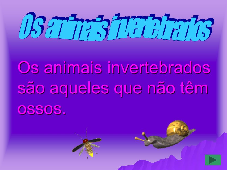 Os animais invertebrados são aqueles que não têm ossos.
