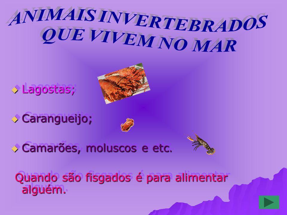 Lagostas; Lagostas; Carangueijo; Carangueijo; Camarões, moluscos e etc.
