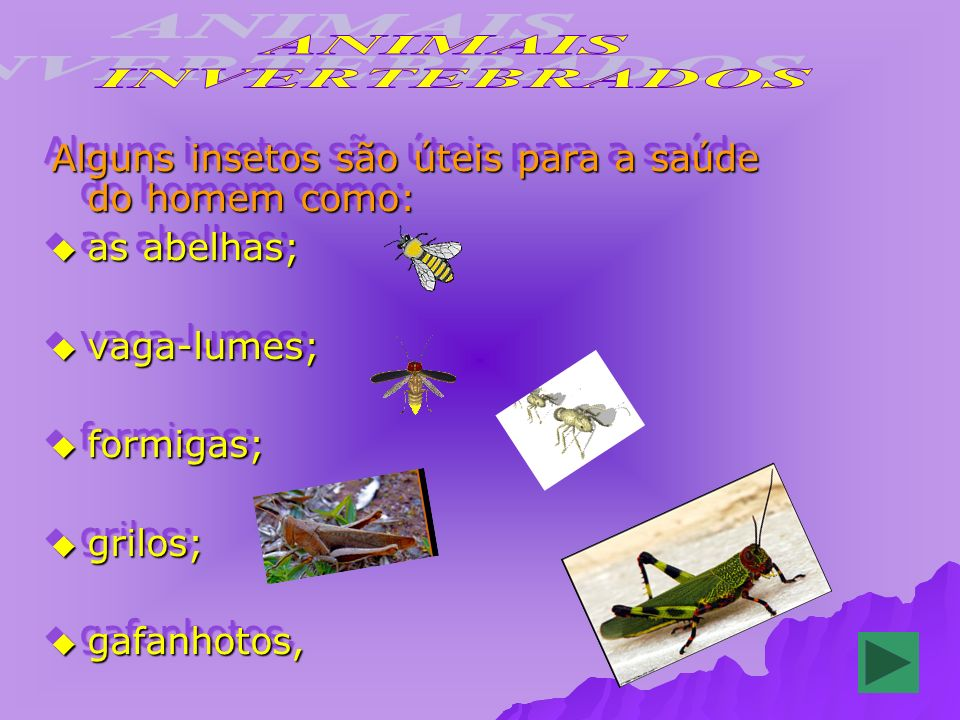 Alguns insetos são úteis para a saúde do homem como: as abelhas; as abelhas; vaga-lumes; vaga-lumes; formigas; formigas; grilos; grilos; gafanhotos, gafanhotos, Alguns insetos são úteis para a saúde do homem como: as abelhas; as abelhas; vaga-lumes; vaga-lumes; formigas; formigas; grilos; grilos; gafanhotos, gafanhotos,