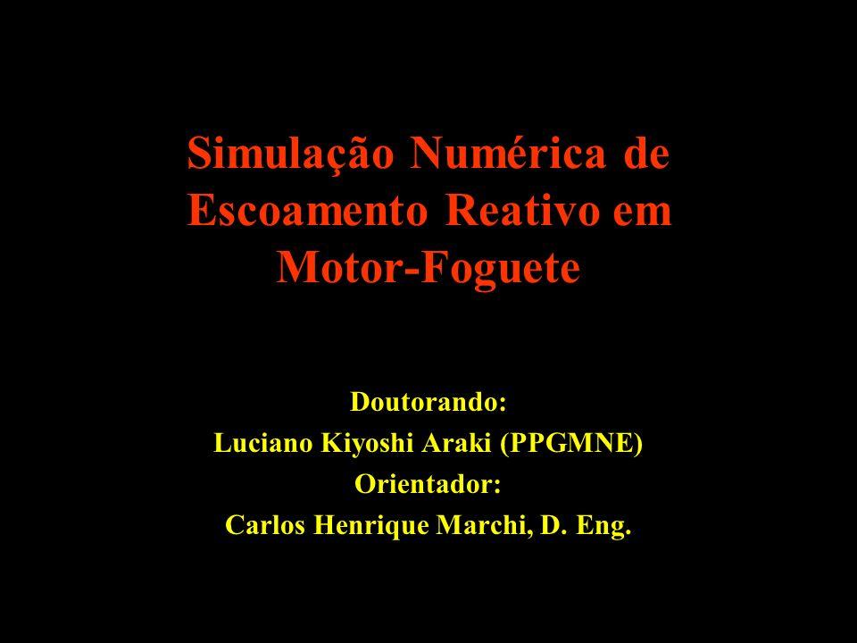 Simulação Numérica de Escoamento Reativo em Motor-Foguete Doutorando: Luciano Kiyoshi Araki (PPGMNE) Orientador: Carlos Henrique Marchi, D. Eng.