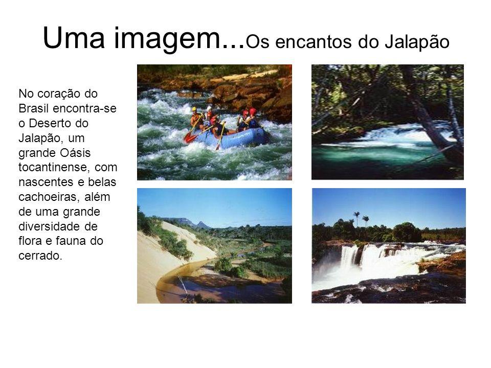 Uma imagem... Os encantos do Jalapão No coração do Brasil encontra-se o Deserto do Jalapão, um grande Oásis tocantinense, com nascentes e belas cachoe