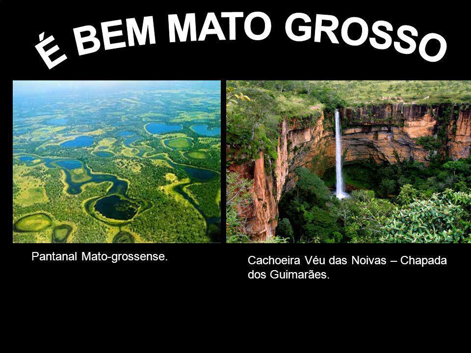 Pantanal Mato-grossense. Cachoeira Véu das Noivas – Chapada dos Guimarães.