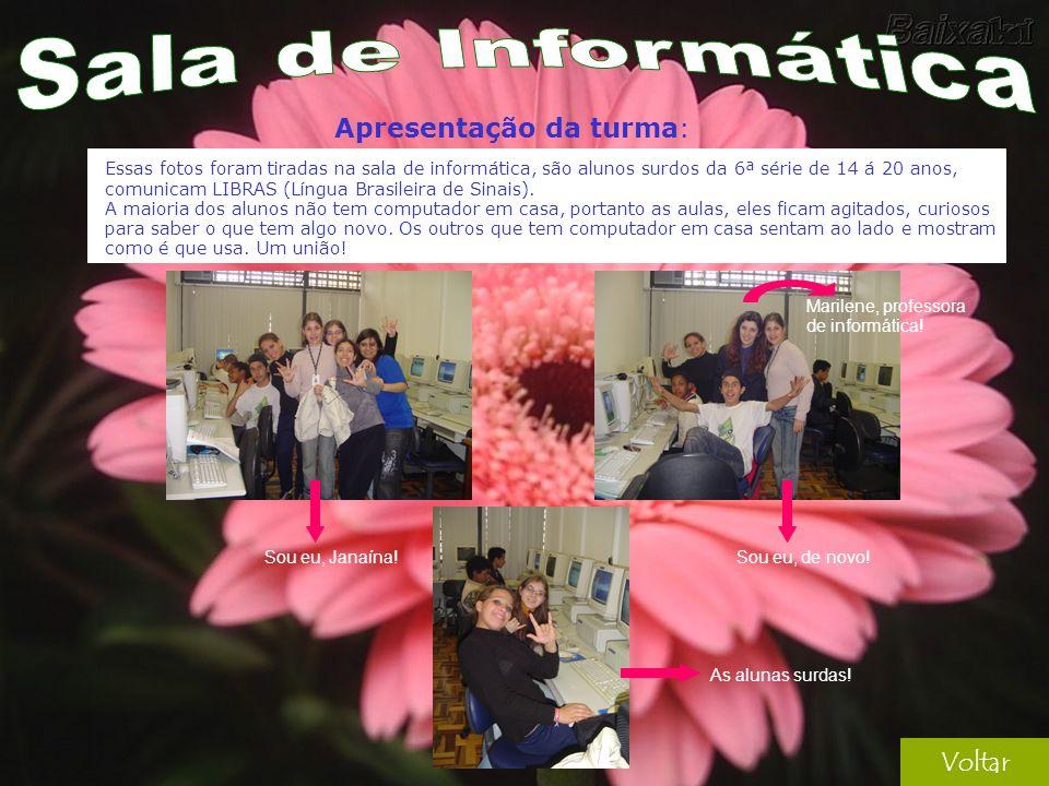 Voltar Essas fotos foram tiradas na sala de informática, são alunos surdos da 6ª série de 14 á 20 anos, comunicam LIBRAS (Língua Brasileira de Sinais).