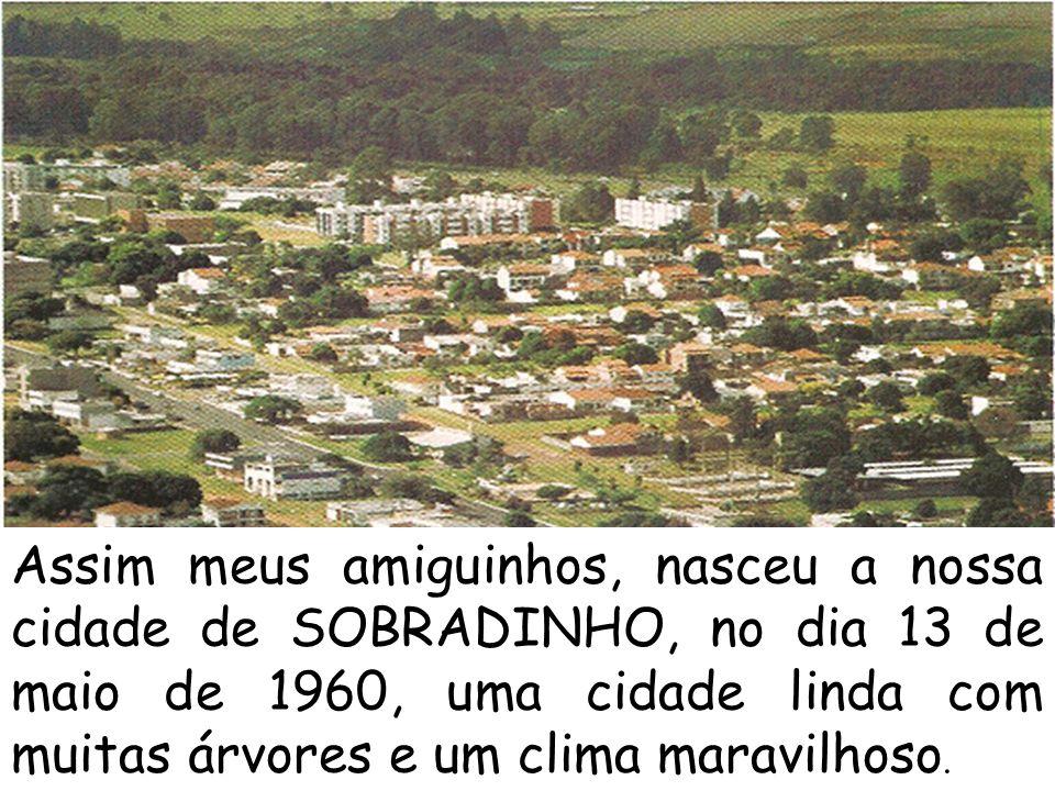 Assim meus amiguinhos, nasceu a nossa cidade de SOBRADINHO, no dia 13 de maio de 1960, uma cidade linda com muitas árvores e um clima maravilhoso.
