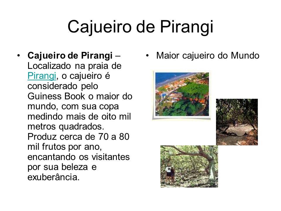 Cajueiro de Pirangi Cajueiro de Pirangi – Localizado na praia de Pirangi, o cajueiro é considerado pelo Guiness Book o maior do mundo, com sua copa medindo mais de oito mil metros quadrados.