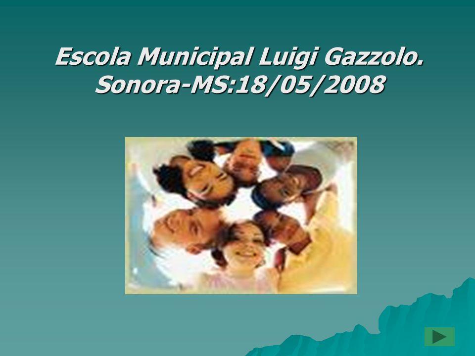 Escola Municipal Luigi Gazzolo. Sonora-MS:18/05/2008