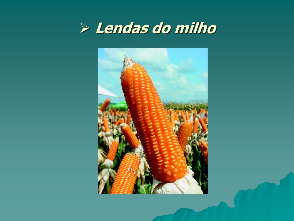 Lendas do milho Lendas do milho