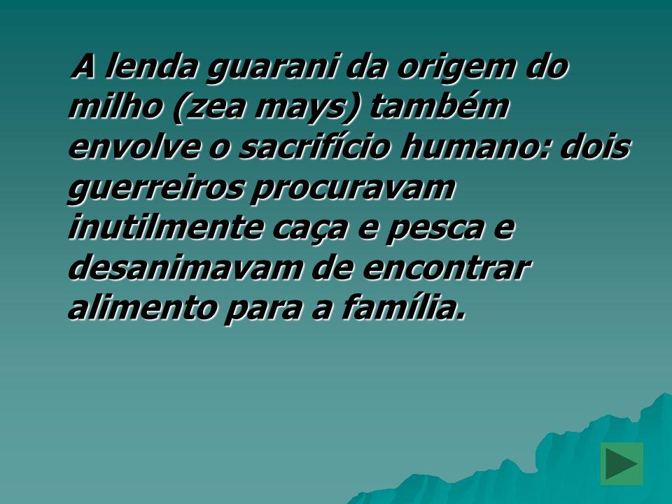 A lenda guarani da origem do milho (zea mays) também envolve o sacrifício humano: dois guerreiros procuravam inutilmente caça e pesca e desanimavam de