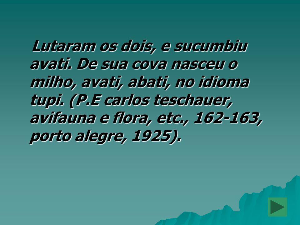 Lutaram os dois, e sucumbiu avati. De sua cova nasceu o milho, avati, abati, no idioma tupi. (P.E carlos teschauer, avifauna e flora, etc., 162-163, p