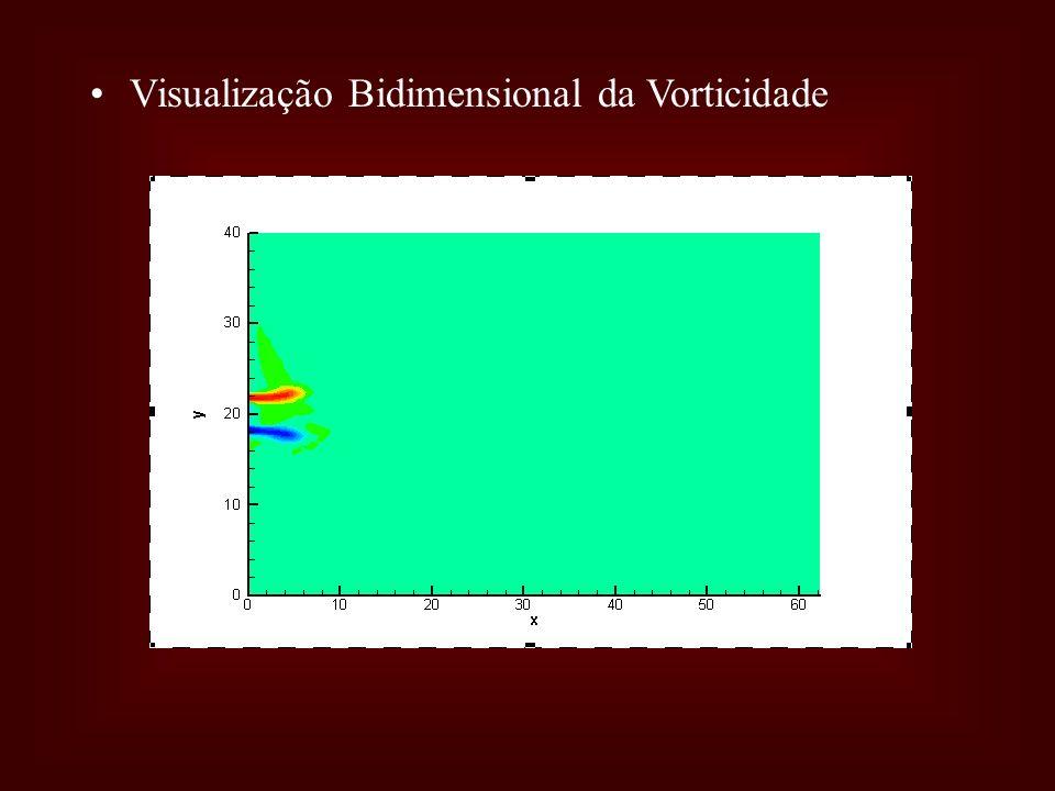 Visualização Bidimensional da Vorticidade