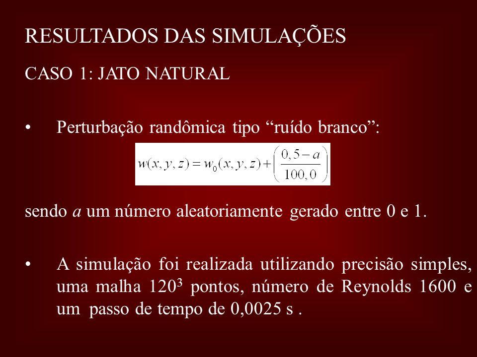 RESULTADOS DAS SIMULAÇÕES CASO 1: JATO NATURAL Perturbação randômica tipo ruído branco: sendo a um número aleatoriamente gerado entre 0 e 1. A simulaç