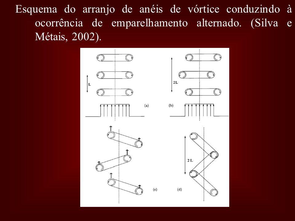 Esquema do arranjo de anéis de vórtice conduzindo à ocorrência de emparelhamento alternado. (Silva e Métais, 2002).