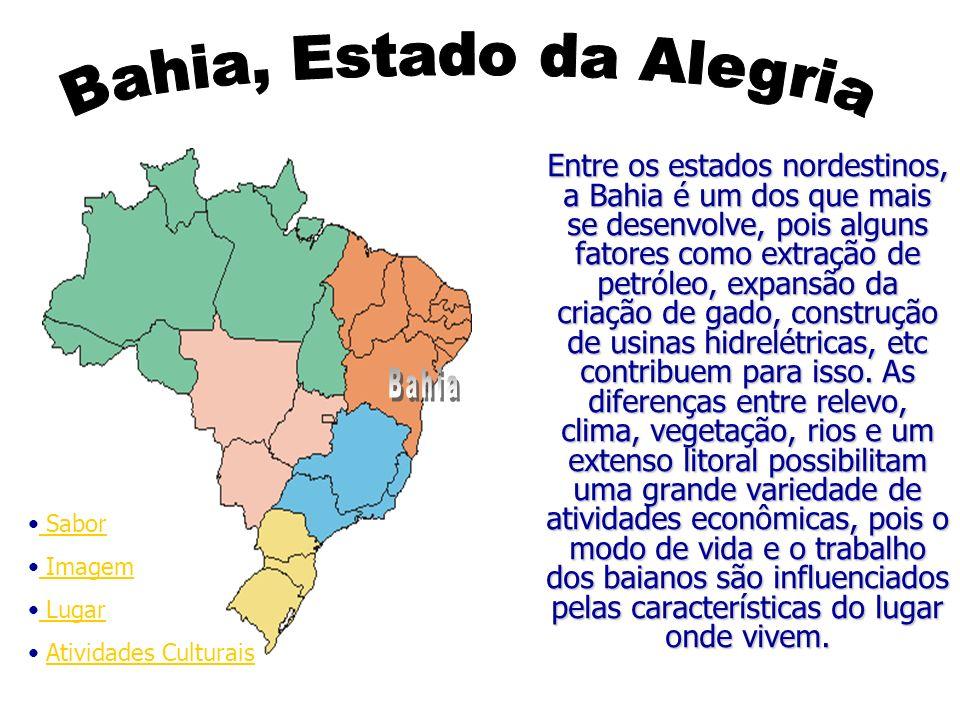 Entre os estados nordestinos, a Bahia é um dos que mais se desenvolve, pois alguns fatores como extração de petróleo, expansão da criação de gado, con