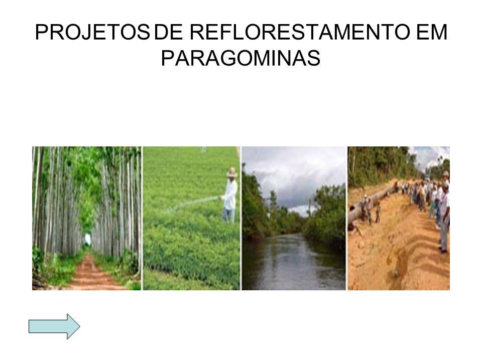 O PRIMEIRO EDIFICIO CONSTRUIDO EM PARAGOMINAS E PRÉDIO DE SERVIÇO DE ATENDIMENTO AO CIDADÃO.