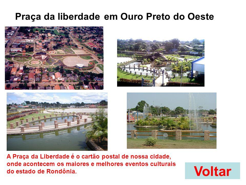 Voltar Praça da liberdade em Ouro Preto do Oeste A Praça da Liberdade é o cartão postal de nossa cidade, onde acontecem os maiores e melhores eventos