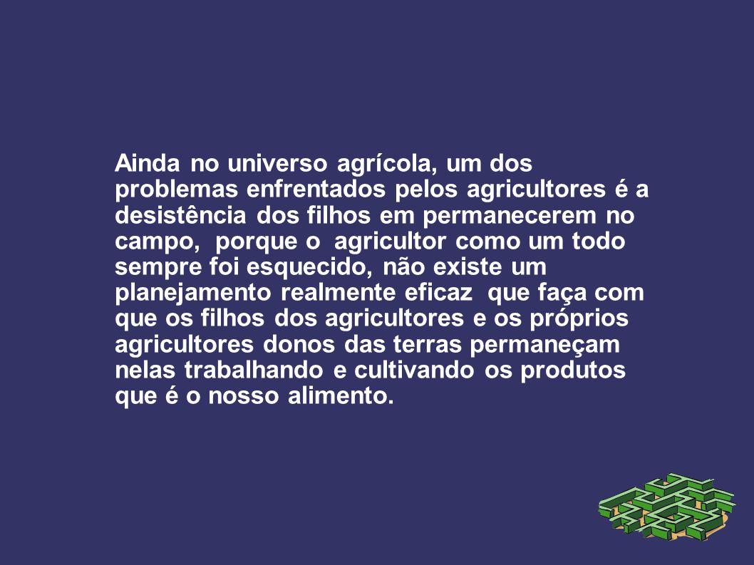 Ainda no universo agrícola, um dos problemas enfrentados pelos agricultores é a desistência dos filhos em permanecerem no campo, porque o agricultor c