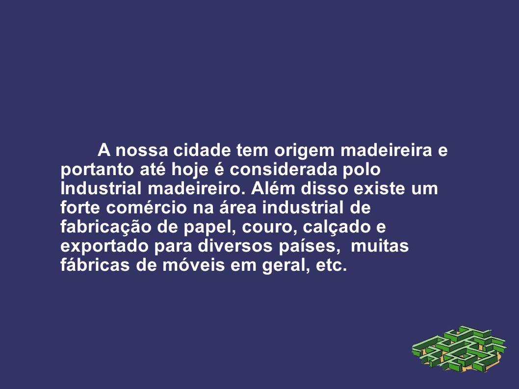 A nossa cidade tem origem madeireira e portanto até hoje é considerada polo Industrial madeireiro. Além disso existe um forte comércio na área industr