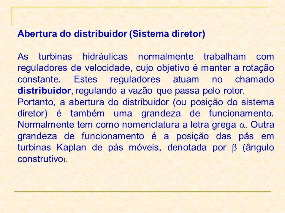 Abertura do distribuidor (Sistema diretor) As turbinas hidráulicas normalmente trabalham com reguladores de velocidade, cujo objetivo é manter a rotaç