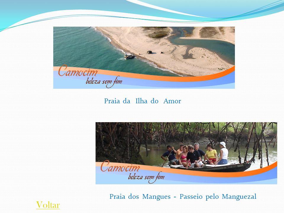 Praia da Ilha do Amor Praia dos Mangues - Passeio pelo Manguezal Voltar