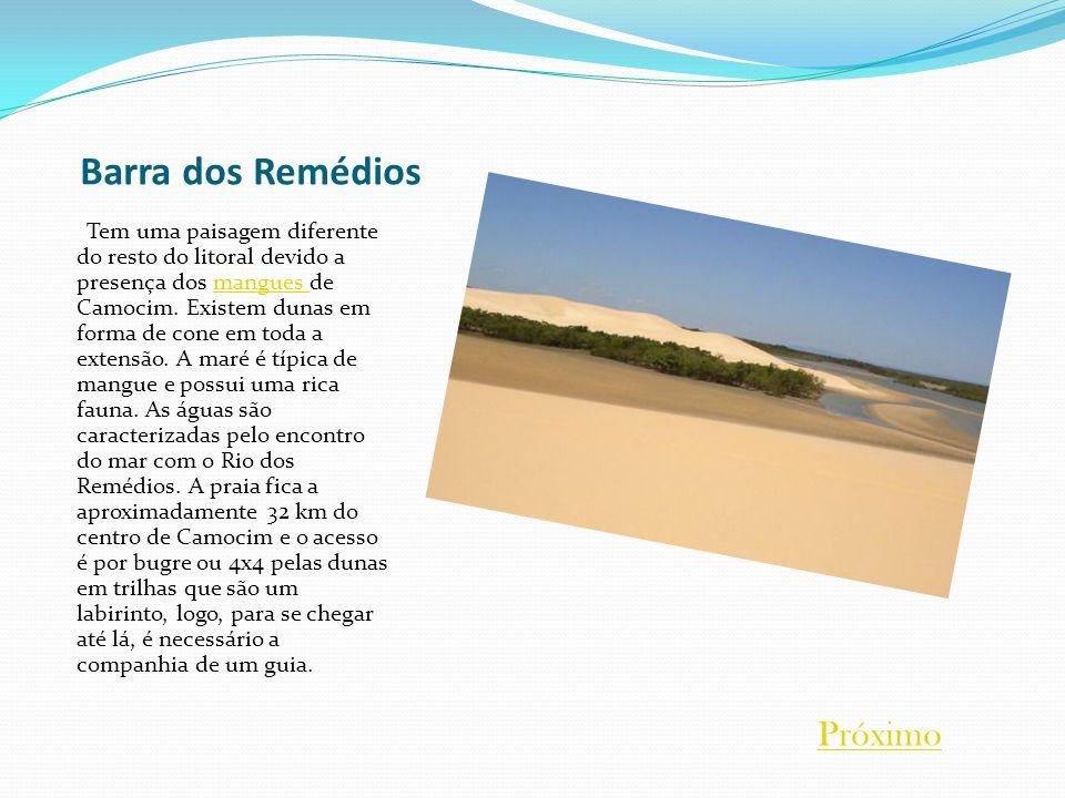Barra dos Remédios Tem uma paisagem diferente do resto do litoral devido a presença dos mangues de Camocim. Existem dunas em forma de cone em toda a e