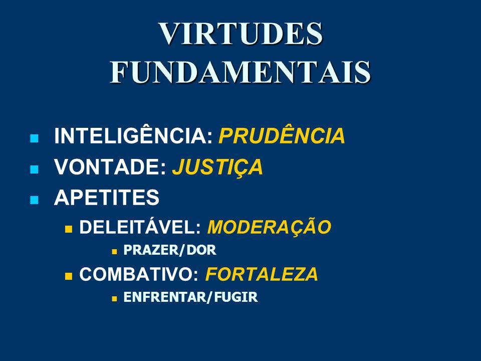 VIRTUDES FUNDAMENTAIS INTELIGÊNCIA: PRUDÊNCIA VONTADE: JUSTIÇA APETITES DELEITÁVEL: MODERAÇÃO PRAZER/DOR COMBATIVO: FORTALEZA ENFRENTAR/FUGIR