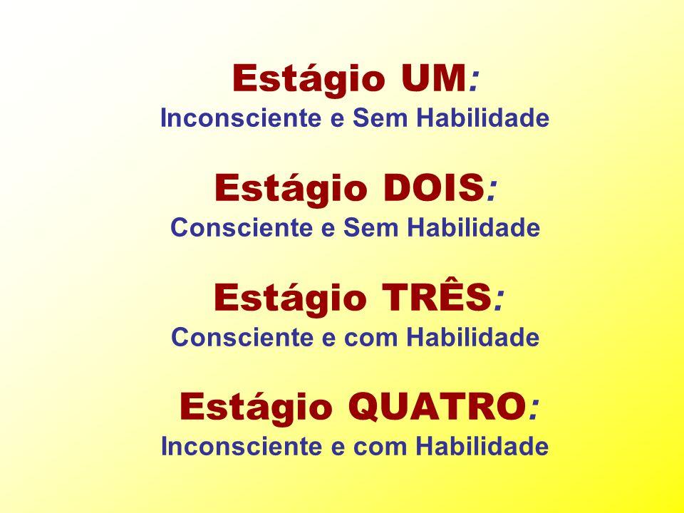 Estágio UM : Inconsciente e Sem Habilidade Estágio DOIS : Consciente e Sem Habilidade Estágio TRÊS : Consciente e com Habilidade Estágio QUATRO : Inco