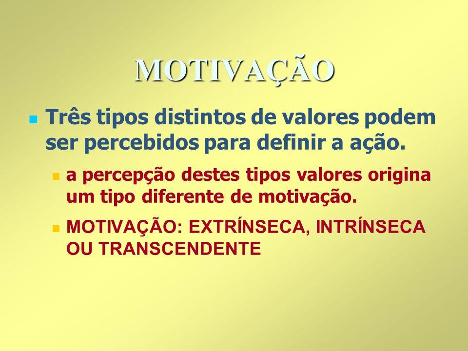 MOTIVAÇÃO Três tipos distintos de valores podem ser percebidos para definir a ação. a percepção destes tipos valores origina um tipo diferente de moti